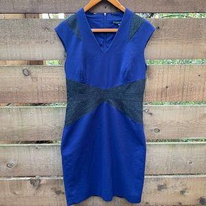 Antonio Melani Shift Dress - size 8